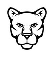 mascot stylized cougar head vector image vector image