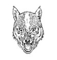 portrait of wolf head and of a wild animal angry vector image vector image