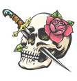 skull with dagger and rose flower tattoo vector image vector image