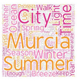 Young Adult Credit text background wordcloud vector image vector image