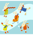 Collection of winter hares vector image vector image
