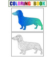 dachshund color and coloring book zen for adults vector image vector image