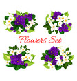 floral bouquets of blooming flowers vector image vector image