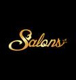 gold salon vector image