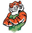 muscular tiger posing vector image vector image