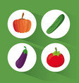 set organic healthy food vector image vector image
