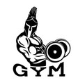 sign of a gym with a warrior vector image vector image