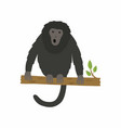 animal howler monkey vector image