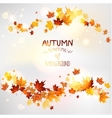 Autumn swirl of maple leaves vector image