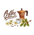 decorative composition with moka pot cup branch vector image vector image