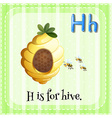 Flashcard letter H is for hive vector image