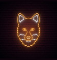 fox glowing neon sign on dark brick wall vector image