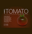 minimalistic banner with a realistic black tomato vector image vector image
