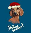sketch art of cute duchshund dog vector image vector image