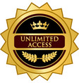 unlimited access gold icon vector image vector image