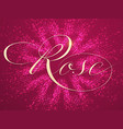elegant rose lettering on background vector image