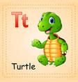 animals alphabet t is for turtle vector image vector image
