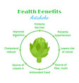 artichokes health benefit organic farm product vector image