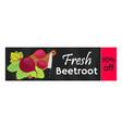 beetroot sale - organic vegetarian nutrition vector image vector image