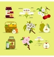 Different fruits and jam jars vector image vector image
