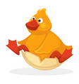funny plump baby duck with red beak and legs vector image vector image