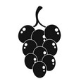 grape for wine icon simple style vector image