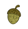 outlined a textured cartoon acorn vector image vector image