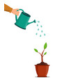 water can in hand water for pour tree and vector image vector image