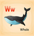 animals alphabet w is for whale vector image vector image
