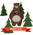 Funny cartoon hipster bear photographer background vector image vector image