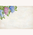lilac on plaster wall background vector image