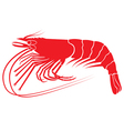 shrimp v8 vector image