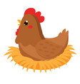 cute hen sitting on nest cartoon farm bird vector image vector image