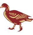 Duck Walking Side Woodcut vector image vector image