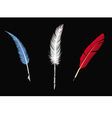feathers collection vector image vector image