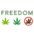freedom caption collage of cannabis vector image