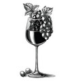 grape wine with glass hand drawn vintage vector image vector image
