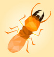 low poly termite with orange background vector image vector image