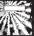 monochrome floral grunge vector image vector image