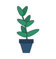 plant pot isolated vector image vector image