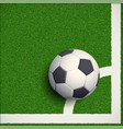 soccer ball on grass football stadium vector image