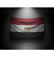 waving flag egypt on a dark wall vector image