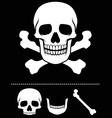 skull and crossed bones icon vector image