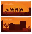 camels walking on desert and western village vector image