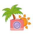 camera photographic with sun summer vector image vector image