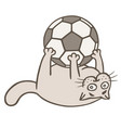 cartoon cat soccer player caught the ball vector image