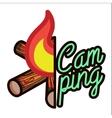 Color vintage Camping emblem vector image vector image