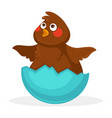 cute plump baby bird inside blue egg shell vector image vector image