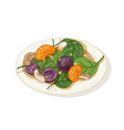 delicious salad on plate isolated on white vector image