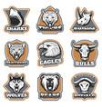 colorful team sport animals logotypes set vector image